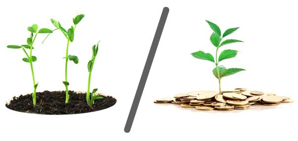 Post organici VS post a pagamento: su Facebook vince.. [RICERCA]