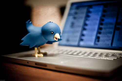 Programmare tweet