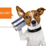 Problemi di comunicazione social tra azienda e community manager, alcune riflessioni