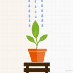Il potere degli Evergreen Content. Idee per realizzarli ed esempi.