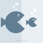 Piccoli contenuti VS grandi contenuti: un confronto