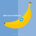 Profilo certificato su Twitter: come e perché ottenerlo
