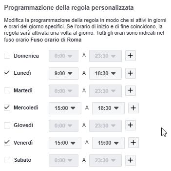 Programmazione della regola personalizzata in Facebook ads